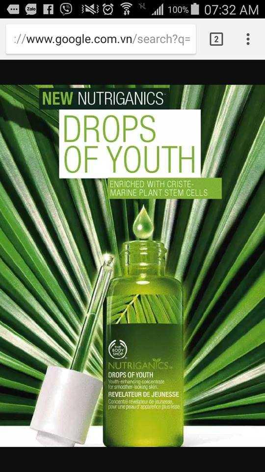 Có ai sử dụng sản phẩm serum Drop of youth của The Body Shop mà bị đổ dầu không ạ?